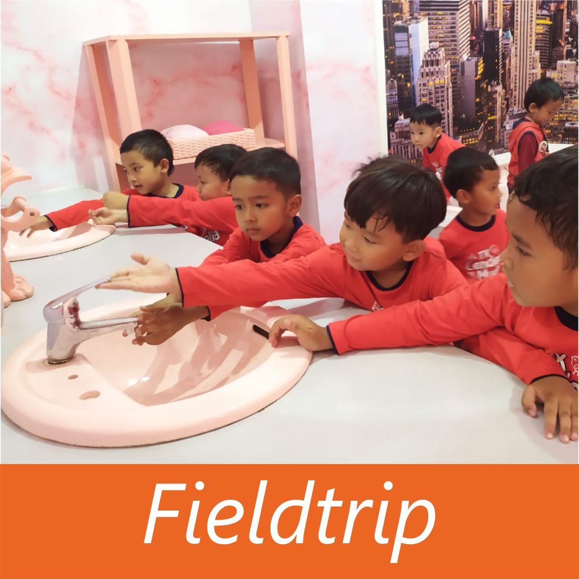 TK-fieldtrip