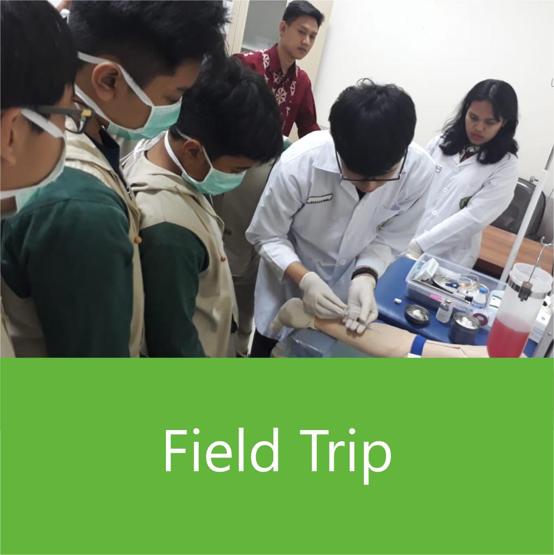 smp-fieldtrip