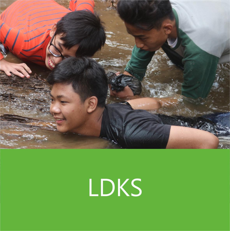 smp-ldks